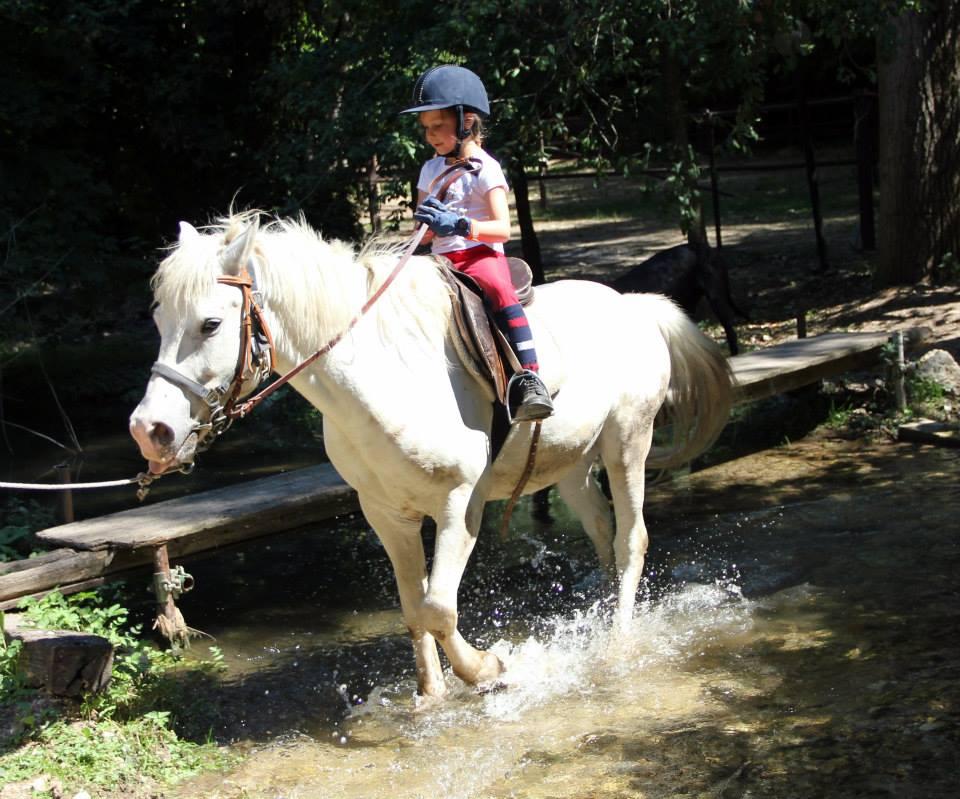 a spasso con il cavallo