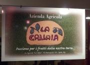 Azienda agricola La Callaia